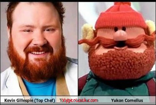 _Fun_Pictures_Don_t_They_Look_Alike_4