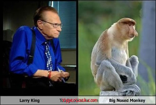 _Fun_Pictures_Don_t_They_Look_Alike_6
