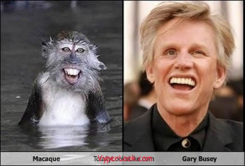 _Fun_Pictures_Don_t_They_Look_Alike_8