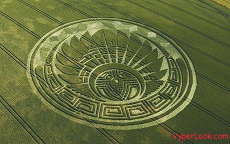mayan cropCircle 1439358c1