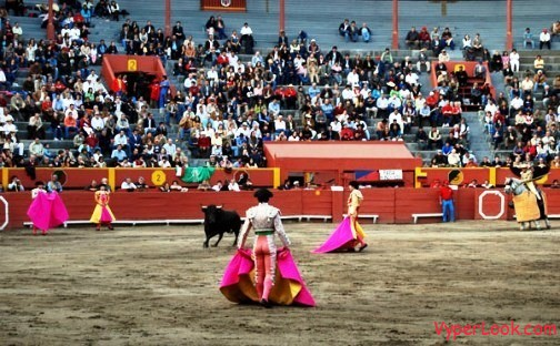 Raging bull charges into crowd injuring 40 People at Bullfight