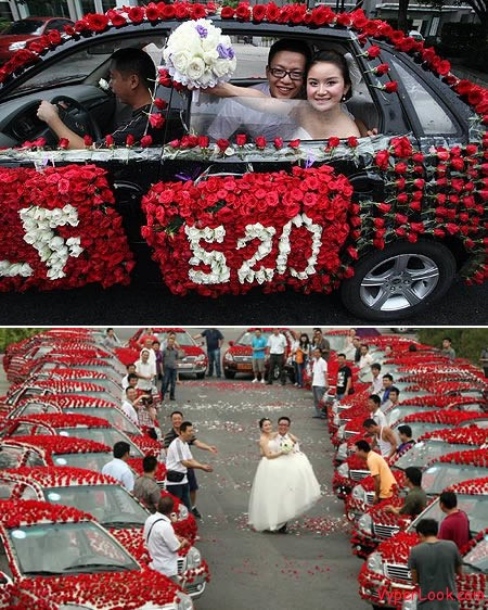 a97216 g145 5 roses2