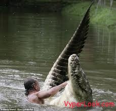 Manusia Ini Bersahabat Karib dengan Buaya... Wah... Aneh Banget...