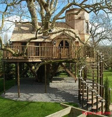 beautiful tree houses 06