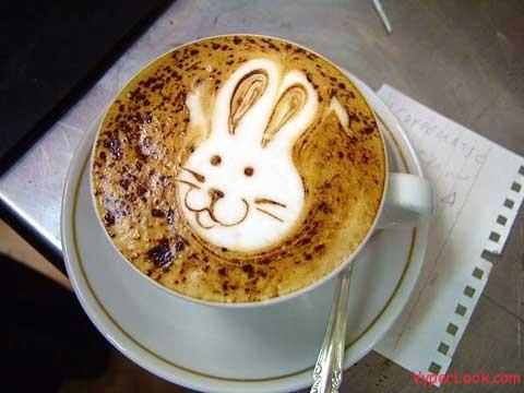 coffee bunny