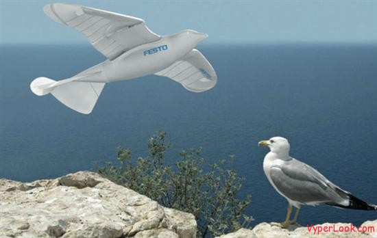 Festo -The Robotic Bird 1