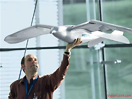 Festo -The Robotic Bird 2