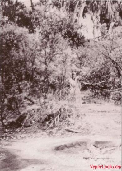 spirit of Corroboree Rock, 1959