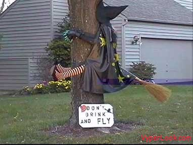 funny witch Spooky And Funny Halloween Superstitions Pictures Seen on www.VyperLook.com