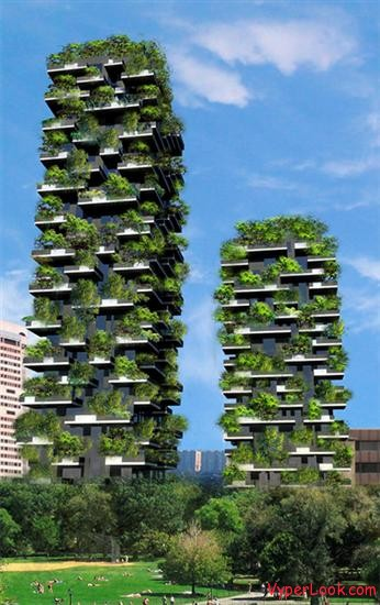 22 Amazing Vertical Garden Ideas For Your Small Yard: First Ever Vertical Forest