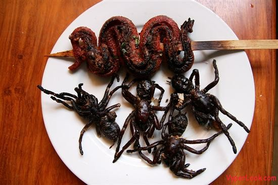 Extremely Weird And Gross International Food Dishes | Odd ...