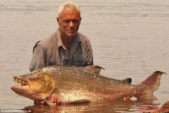giant piranha 3