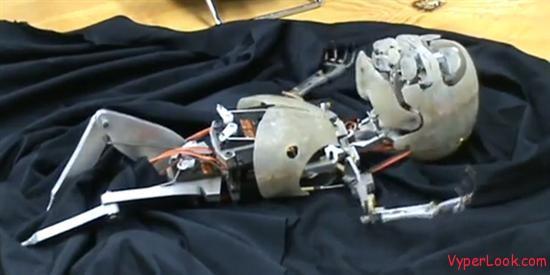 Amazing Lifelike Animatronic Robot Baby