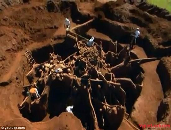 Giant Ant Hill Megalopolis Discovered In Brazil 1