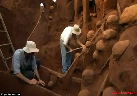 Giant Ant Hill Megalopolis Discovered In Brazil 4