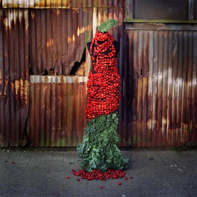Nicole Dextras crab apple gown