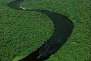 Borneo river Giant Snake Biggest Snake In The World 55 Feet Long as seen on CoolWeirdo.com