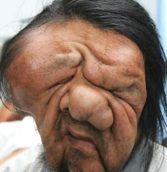 Ou Guifeng elephant man china 2