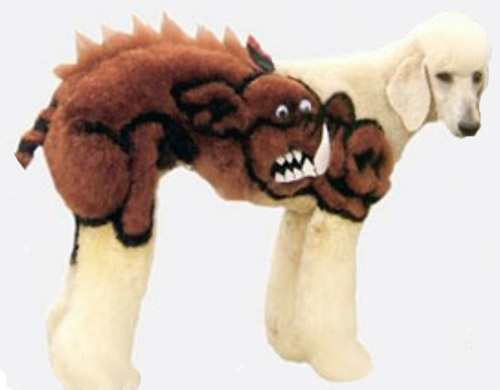 Extreme dog grooming 10 Strangest Hobbies Pictures Seen on www.VyperLook.com