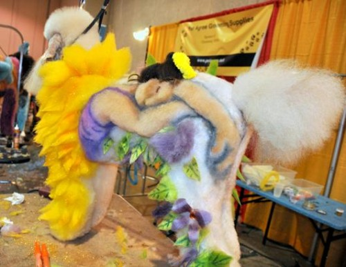 Extreme dog grooming 8 Strangest Hobbies Pictures Seen on www.VyperLook.com