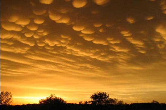 Mammatus Clouds 2