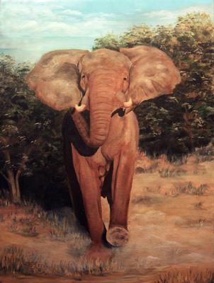african-elefant