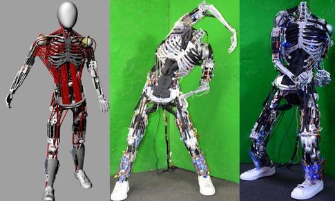 Kenshiro humanoid robot 2