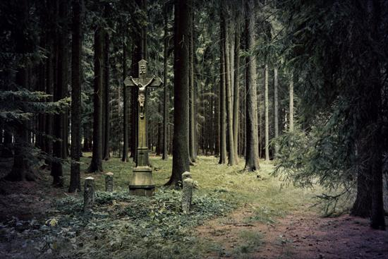 haunted forest 2