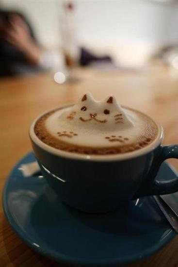 coffee cat foam art