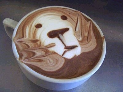 coffee foam art bear