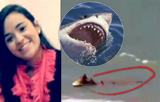 Bruna Gobbi attaked by shark 1