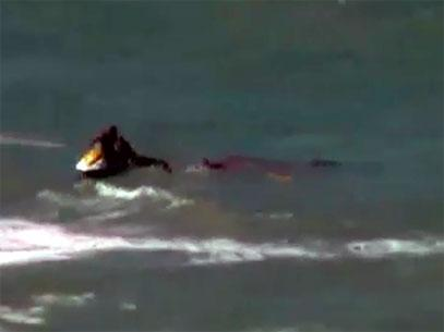 Bruna Gobbi attaked by shark 6