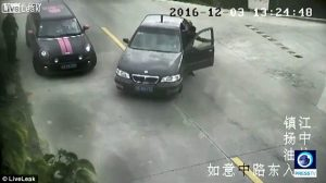 driver catch the car while falling into river 300x168