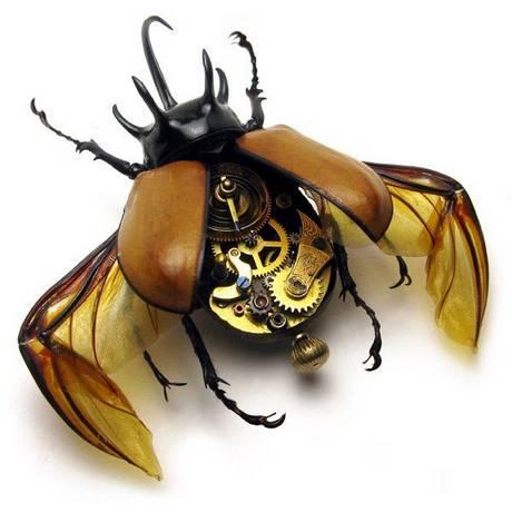 105693mechanical bug01