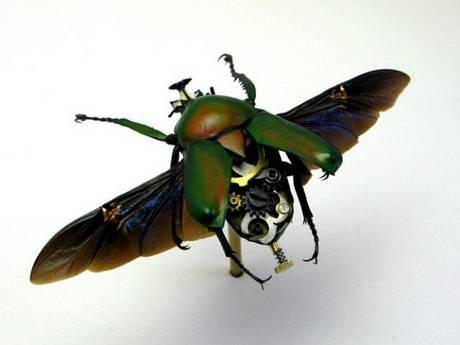 105693mechanical bug02