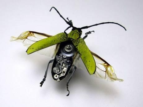 105693mechanical bug10