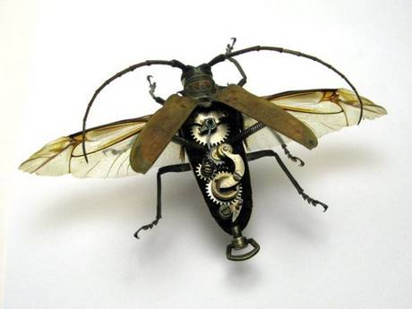 105693mechanical bug13 Fascinating Mechanical Insects Pictures Seen on www.VyperLook.com