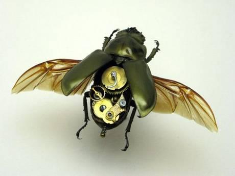 105693mechanical bug16