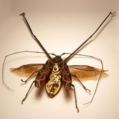 105693mechanical bug19