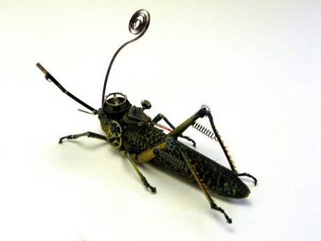 105693mechanical bug24