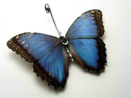 105693mechanical butterfly