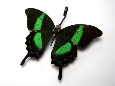 105693mechanical butterfly11