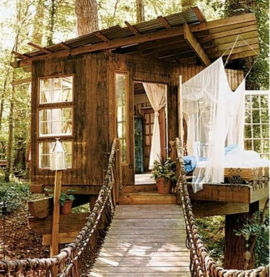 436436beautiful tree houses 02