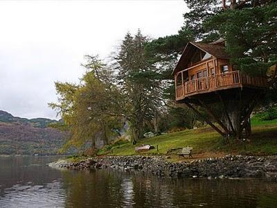 436436beautiful tree houses 03