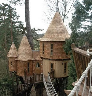 436436beautiful tree houses 10