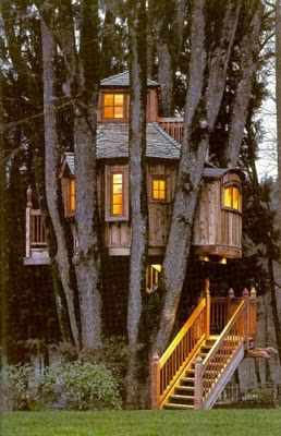 436436beautiful tree houses 14