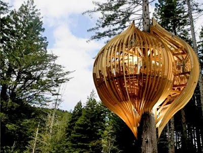 436436beautiful tree houses 27