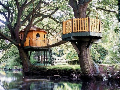 436436beautiful tree houses 29