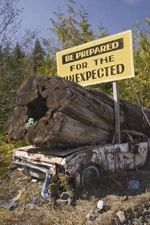 445966Amazing Funny Road Signs Pictures (15)