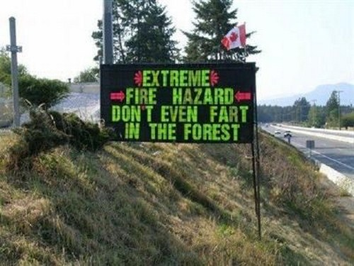 445966Amazing Funny Road Signs Pictures (8)